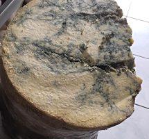 Mağara Keçi Deri Küflü Peynir 500 gr