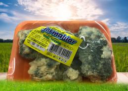 Küflü Peynir 500 gr